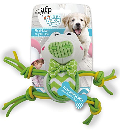 ALL FOR PAWS AFP4206 Hundespielzeug Little Buddy Krokodil von ALL FOR PAWS