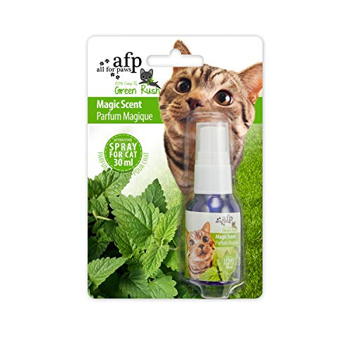 Green Rush - Magic Scent - Katzenminze zum Sprühen von All for Paws
