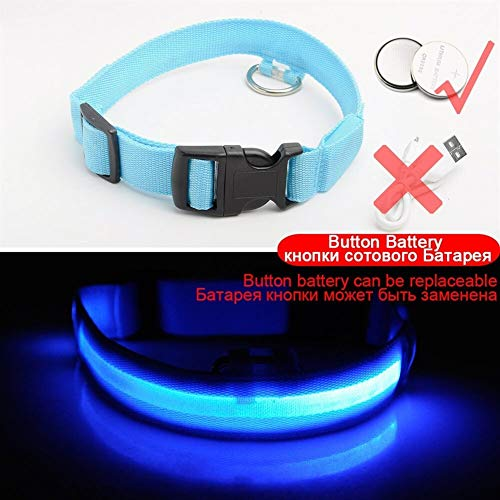USB Lade Led Hundehalsband Anti-Lost/Vermeiden Autounfall Kragen for Hunde Welpen Hundehalsbänder Führt LED Supplies Pet Produkte (Color : Blue Button Battery, Size : L 45 52 cm) von BGDRR