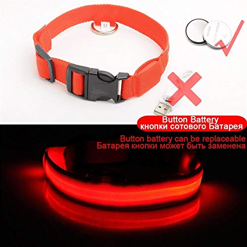 USB Lade Led Hundehalsband Anti-Lost/Vermeiden Autounfall Kragen for Hunde Welpen Hundehalsbänder Führt LED Supplies Pet Produkte (Color : Red Button Battery, Size : L 45 52 cm) von BGDRR