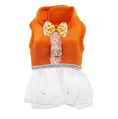 CHENGTAO 5 Farben Mesh Hundegeschirr Leine Set Bowtie Kleine Hund Katze Kleid Harness Kragen Pet Lace Tutu Rock Weste Harness Kleidung Liefert Trainingsleine (Color : Orange, Size : S) von CHENGTAO