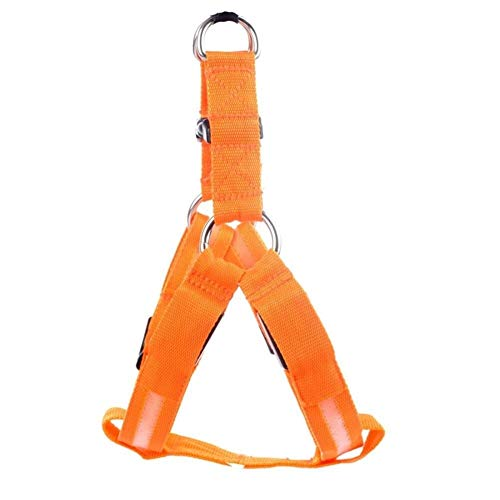 CHENGTAO Nylon Haustier Sicherheit LED Harness Hund Produkt Blinklicht Harness LED Hundegeschirr Leine Seil Gürtel LED Hundehalsband Weste Heimtierbedarf Trainingsleine (Color : Orange, Size : XS) von CHENGTAO