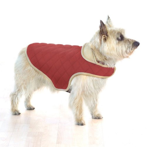 Company of Animals Dog Gone Smart gesteppt Jacke, 51 cm, rot von Company of Animals