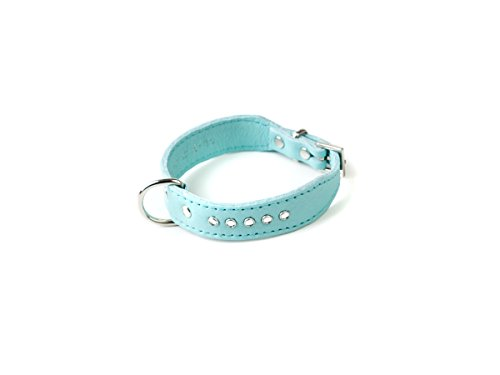 Doggy Things Italienisches mit Halsband von Doggy Things