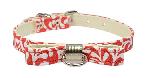 "Evans Collars Collar with Bow,14"", Plume, Red von Evans Collars"