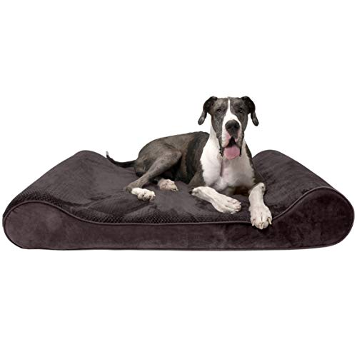 Furhaven Pet Dog Bed | Orthopedic Minky Plush & Velvet Ergonomic Luxe Lounger Cradle Mattress Contour Pet Bed w/Removable Cover for Dogs & Cats, Espresso, Giant von Furhaven