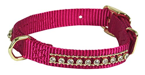 Hamilton Gold Rhinestone Collar with D-Ring, 5/8 by 14-Inch, Raspberry von Hamilton