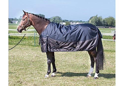 Harry's Horse 32204528-165cm X-Treme 1200 200g - 165cm, M von Harry's Horse
