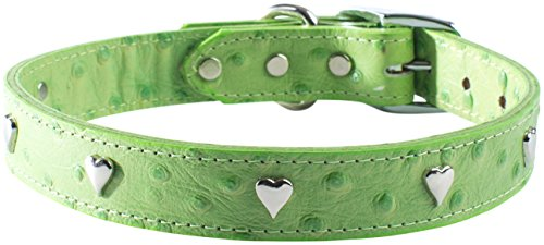 "OmniPet Faux Ostrich Signature Leather Dog Collar with Heart Ornaments, Lime, 16"" von OmniPet"