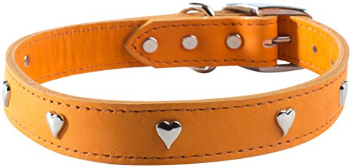 "OmniPet Signature Leather Dog Collar with Heart Ornaments, Mandarin, 12"" von OmniPet"