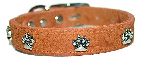 "OmniPet Signature Leather Suede Dog Collar with Paw Ornaments, 3/4"" x 16"", Mocha von OmniPet"