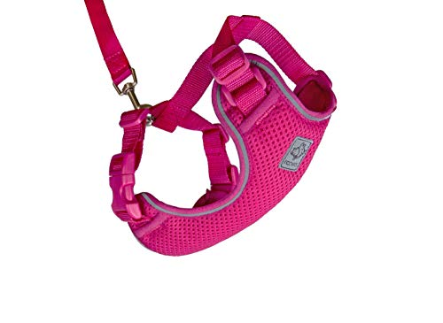 RC Pet Products Adventure Kitty Harness, Cat Walking Harness, Large, Raspberry (53805014) von RC Pet Products