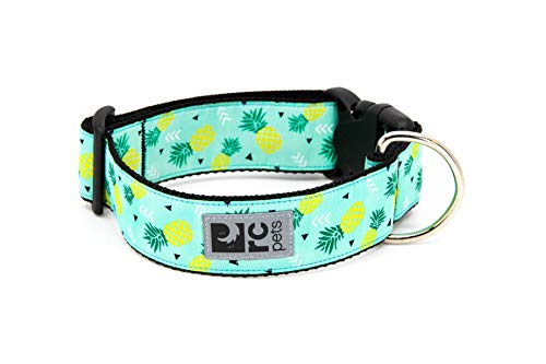 Rc Pets Hundehalsband mit Clip, 3,8 cm breit, Medium, Ananasparade von RC Pet Products