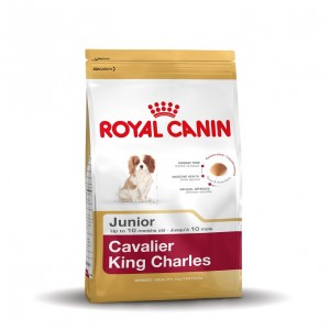 Royal Canin Junior Cavalier King Charles Hundefutter 3 x 1,5 kg von Royal Canin Breed