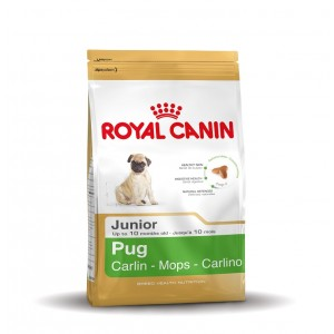 Royal Canin Junior Mops Hundefutter 1.5 kg von Royal Canin Breed