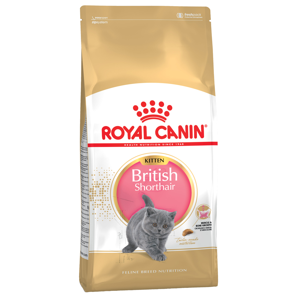 Sparpaket Royal Canin Kitten 2 x 10 kg / 4 kg - British Shorthair Kitten (2 x 10 kg) von Royal Canin Breed