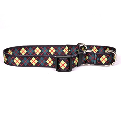 Yellow Dog Design Grün Argyle Martingale Hundehalsband von Yellow Dog Design