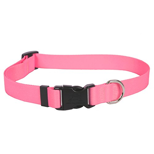 Yellow Dog Design Light Pink einfach Solide Hundehalsband 3/20,3 cm breit und von Yellow Dog Design