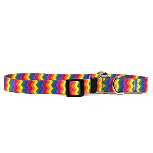 "Yellow Dog Design Rainbow Chevron Martingale Dog Collar, Large-1"" Wide and fits Neck Sizes 18 to 26"" von Yellow Dog Design"