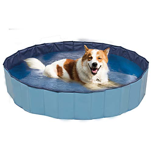 Zoo Med Croci Swimming Pool Explorer, ideal für Hunde, 120 x 30 cm von Zoo Med